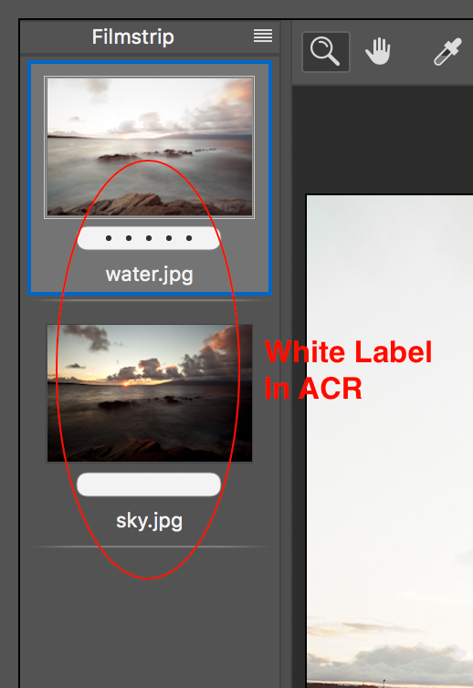 acr-white-label.png