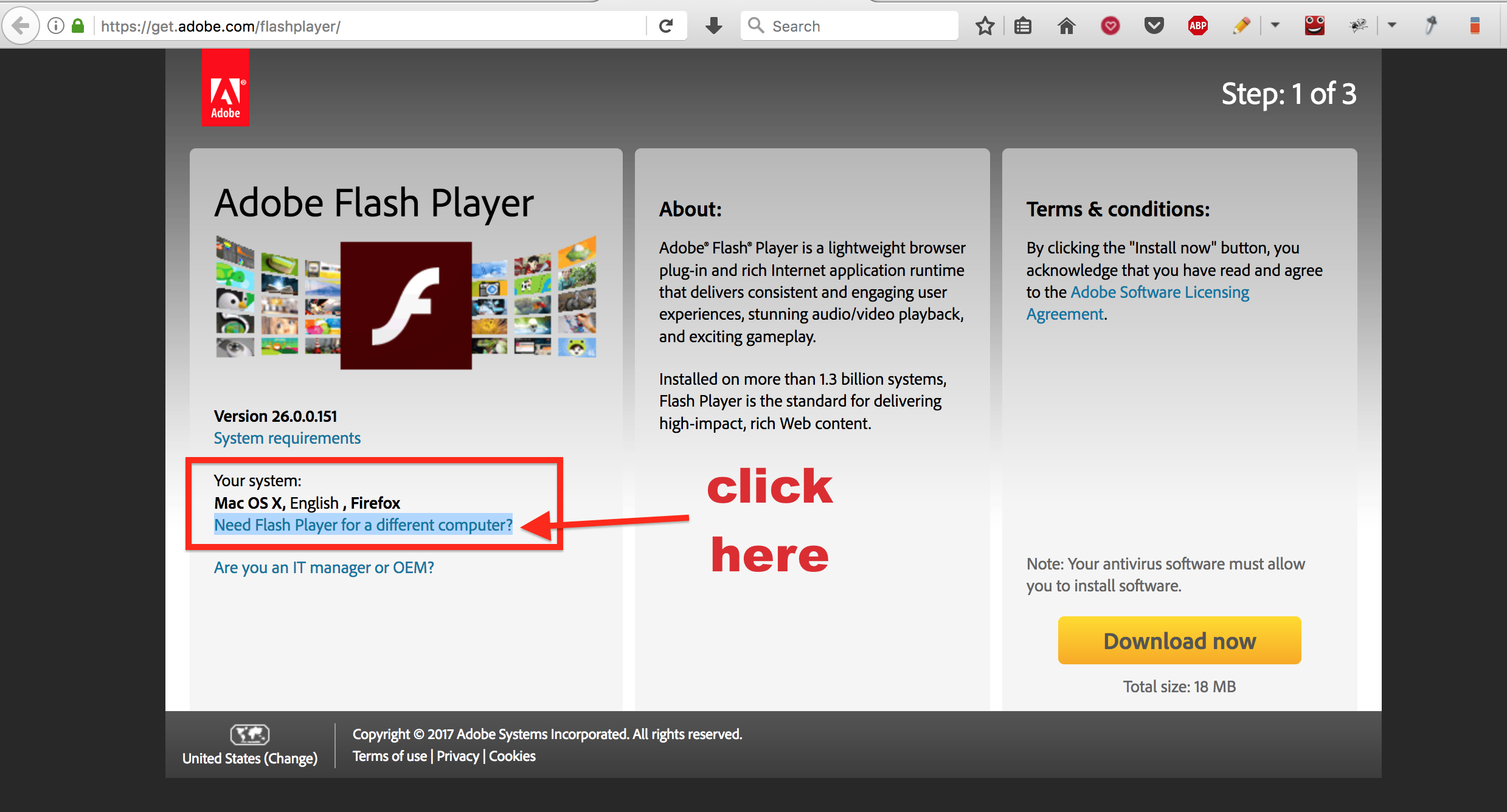 tor browser and adobe flash player hydraruzxpnew4af