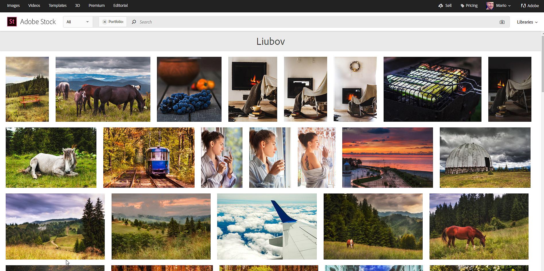 portfolio_liubov_online.jpg