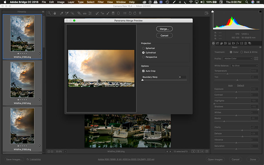 Camera RAW Pano Issue copy.jpg