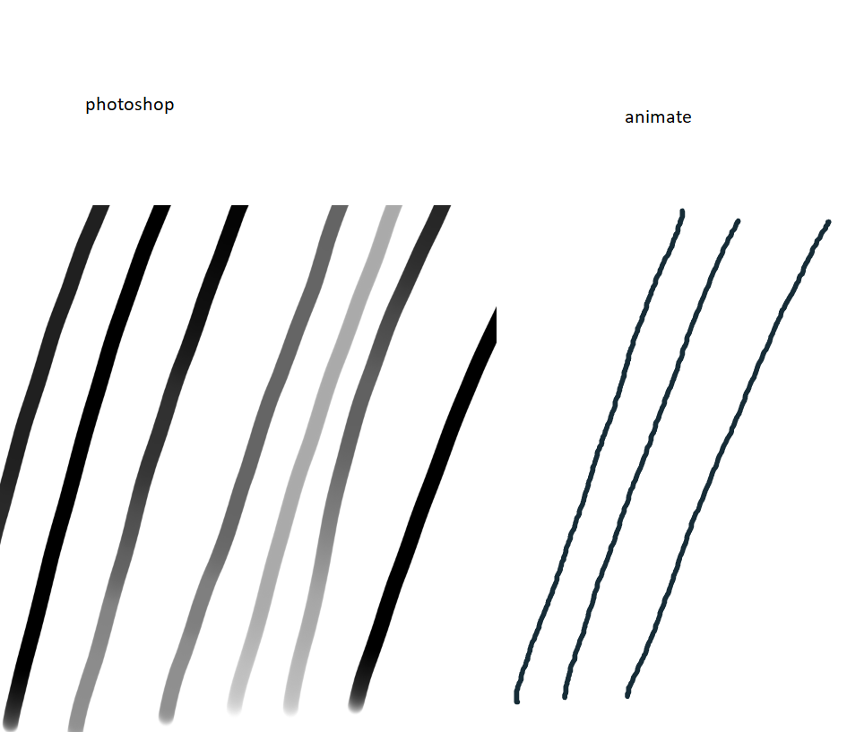 adobe lines.png
