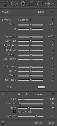 Lightroom adjustment brush not showing