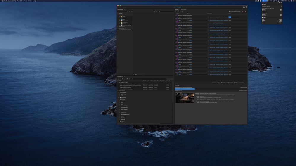 Screen Shot 2020-05-29 at 9.33.33 PM.jpg