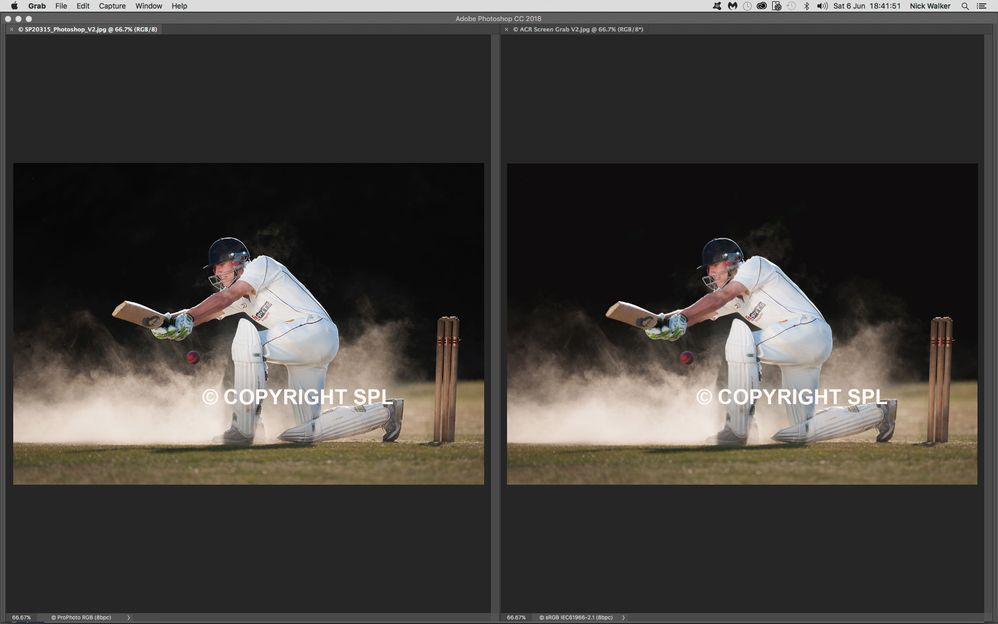 Cricket_Side_by_Side_V4.jpg