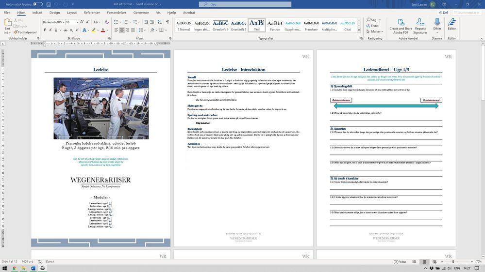 Adobe-word-format-1.jpg