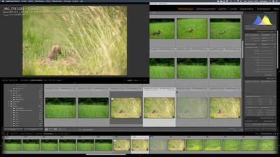 Capture d'écran 2020-06-10 à 19.29.34.png
