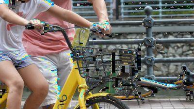 Bike with artifacts.jpg