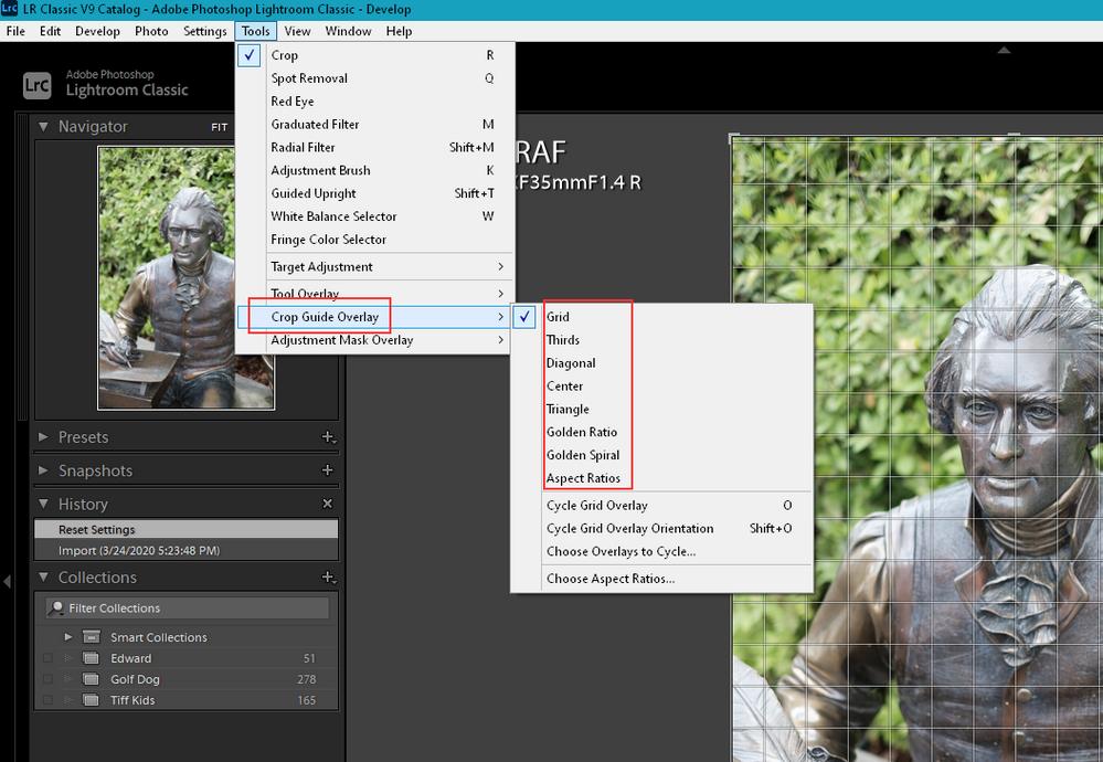 2020-06-20 10_08_26-LR Classic V9 Catalog - Adobe Photoshop Lightroom Classic - Develop.png