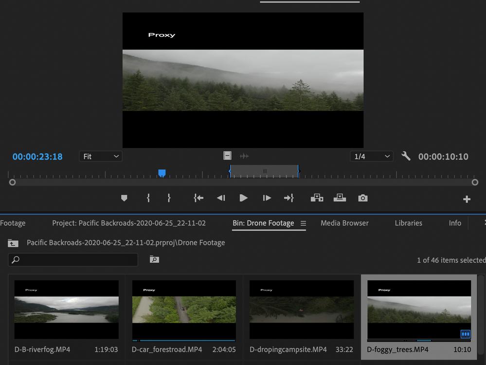 Screen Shot 2020-06-29 at 1.14.10 PM.png