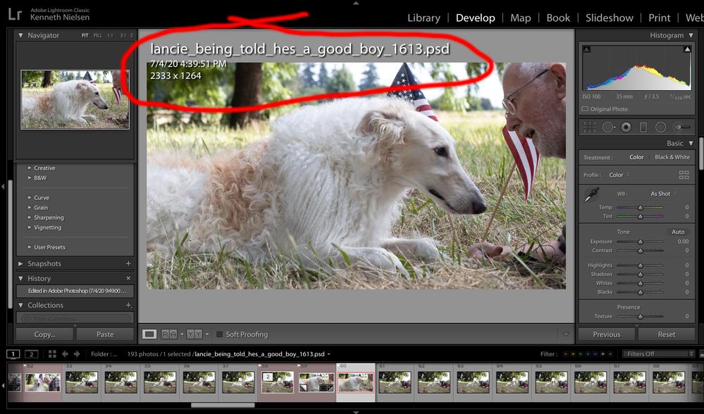 Screen Shot 2020-07-05 at 8.56.48 AM.png