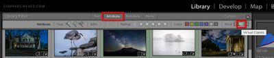 Virtual-Copies-filter.jpg