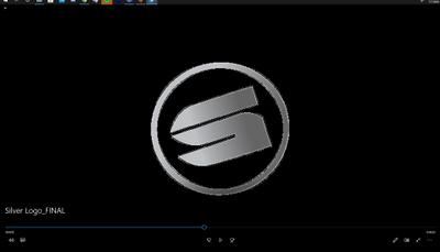 Silver Logo_Bad.png