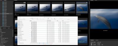 Screen Shot 2020-07-11 at 7.14.58 PM.png