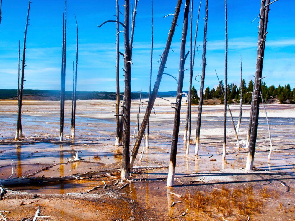 Yellowstone.jpg
