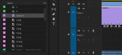 Selecting the Captions in the Project panel (filename list) instead of the timeline.