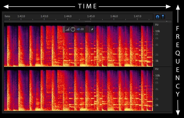 Spectral Display 1.jpg