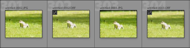Screenshot 2020-07-23 at 14.07.12.png