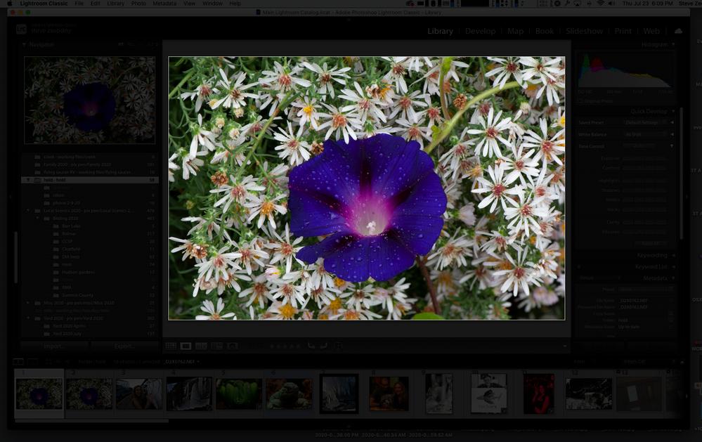 Screen Shot 2020-07-23 at 6.09.00 PM.png