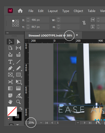 InDesign Zoom(1).png