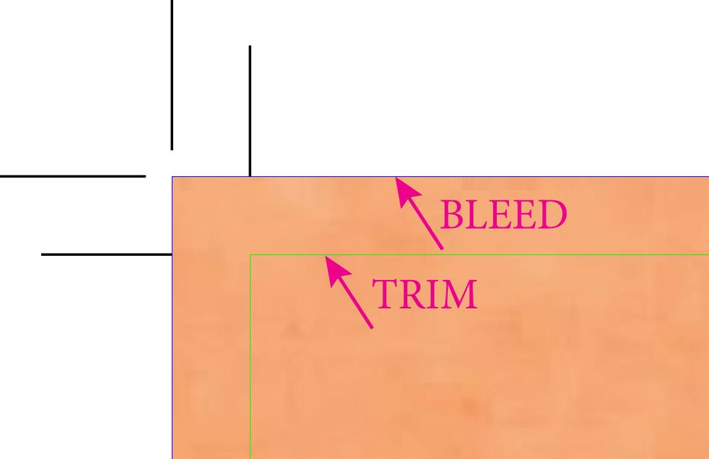 trim bleed better.png