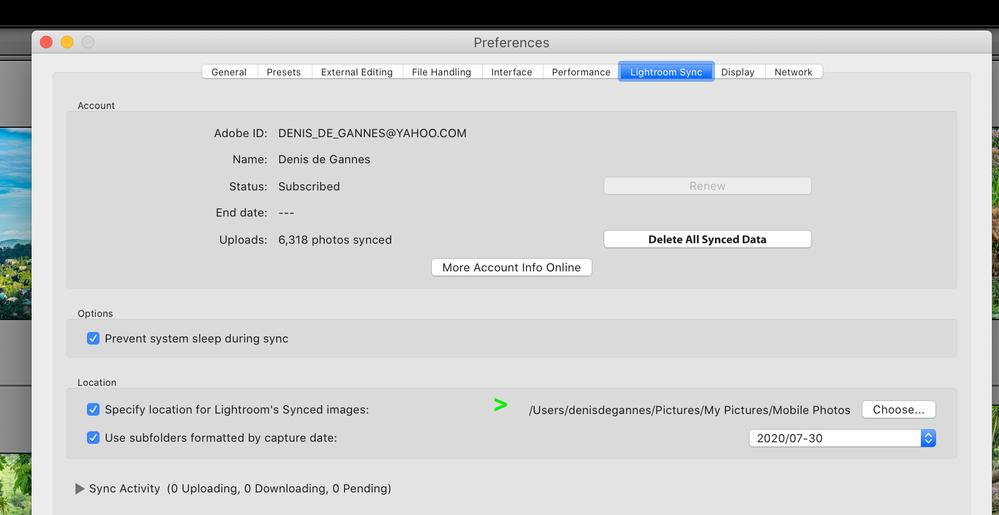 Screenshot 2020-07-30 at 10.41.05 AM.png
