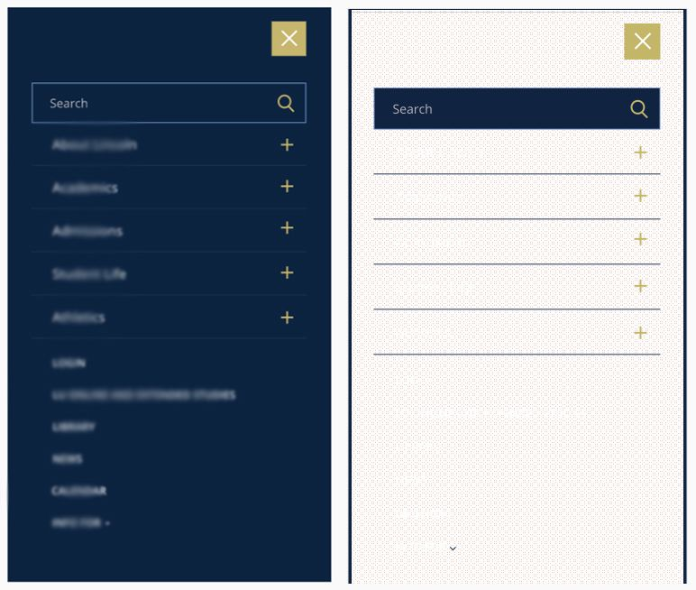 Left is Preview, Right is in Browser. Text has been blurred for client privacy.