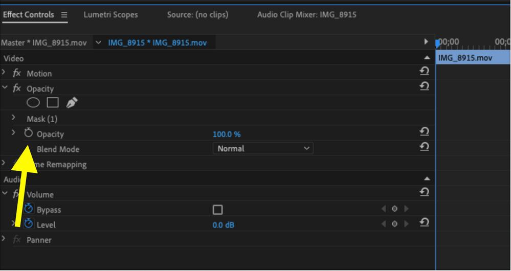 Screen Shot 2020-07-31 at 1.38.49 PM.png
