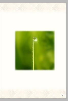 Screenshot 2020-08-04 at 10.03.58.png