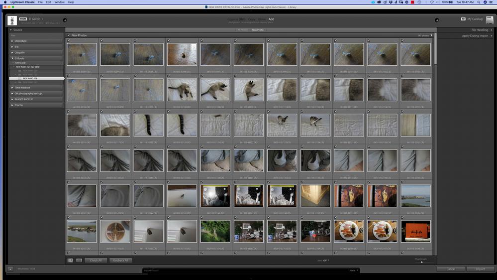 Screen Shot 2020-08-04 at 10.47.09 AM.png