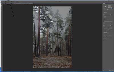 Image 8-8-20 at 11.32 AM.jpg