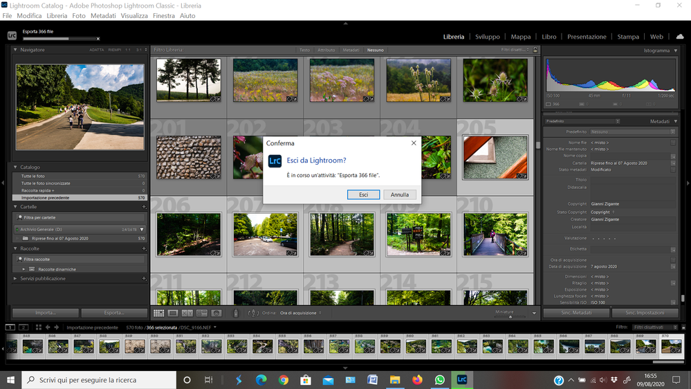 Screenshot 2020-08-09 16.55.20.png