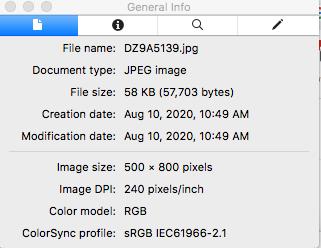 Screen Shot 2020-08-10 at 10.52.03 AM.png