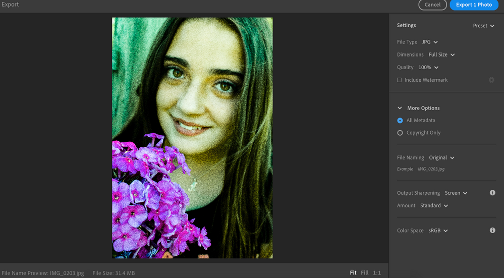this is the image when I am exporting it