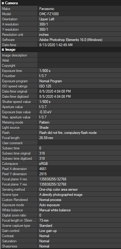 screenclip of EXIF data from gfbugaboo photo