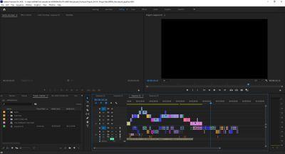 Adobe Premiere Post_Sequence Help Screenshot 1.jpg