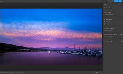 This is what appears after I select to export the image, in Lightroom.