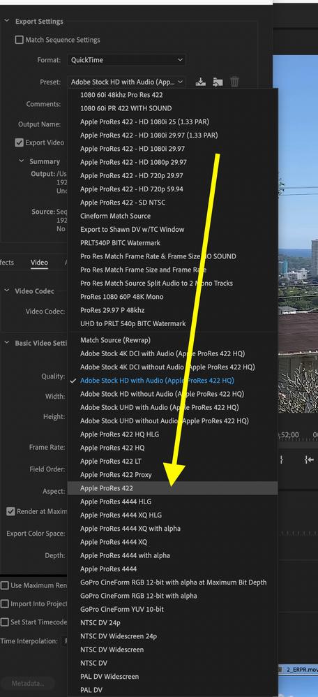 Screen Shot 2020-08-18 at 3.25.19 PM.png