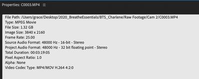 Screenshot 2020-08-25 at 11.24.12 AM.png