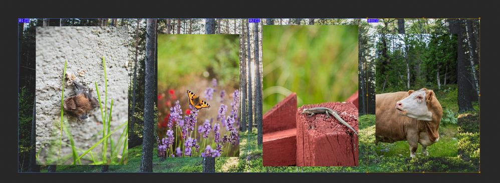 Capture d'écran 2020-08-27 à 09.36.31.png