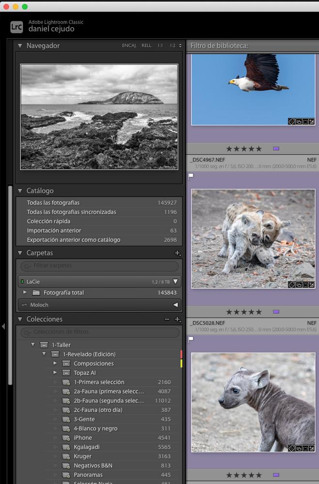 Captura de pantalla 2020-09-01 a las 12.18.02.png