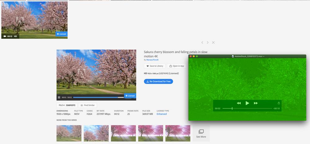 Screen Shot 2020-09-03 at 3.07.16 PM.png