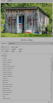 Screen Shot 2020-09-10 at 12.07.11 PM.png