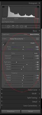 Adobe Lightroom Classic Basic Panel