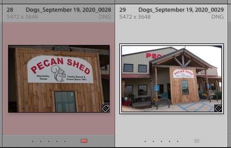 Screen Shot 2020-09-22 at 5.29.26 PM.jpg