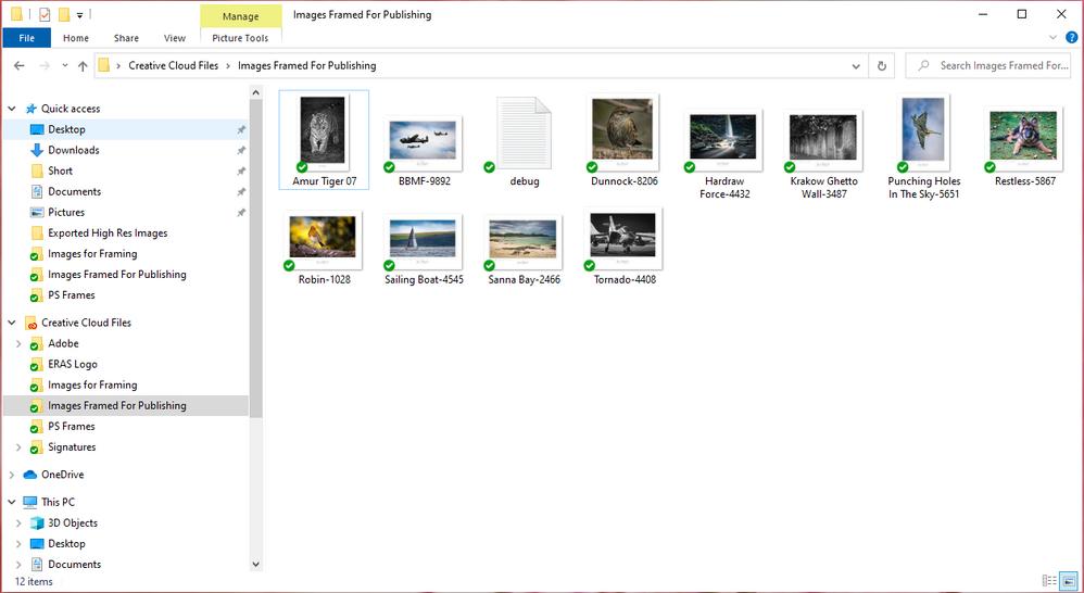 Desktop PC File Explorer CC Files.PNG