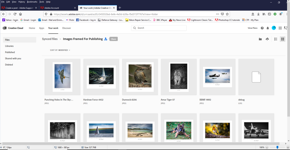 Online Adobe Creative Cloud Area.PNG