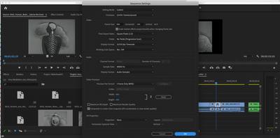 Screen Shot 2020-09-29 at 9.56.09 AM.png