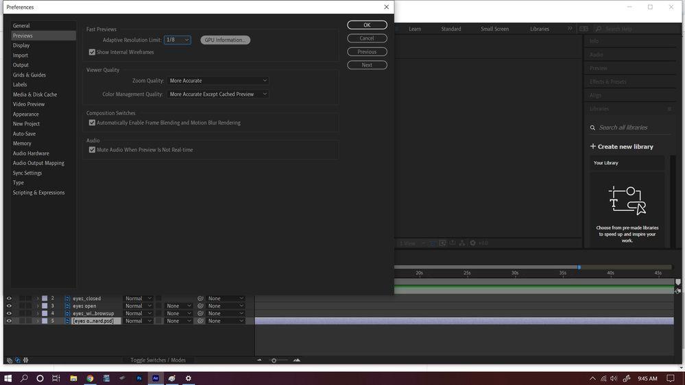 preview window.jpg