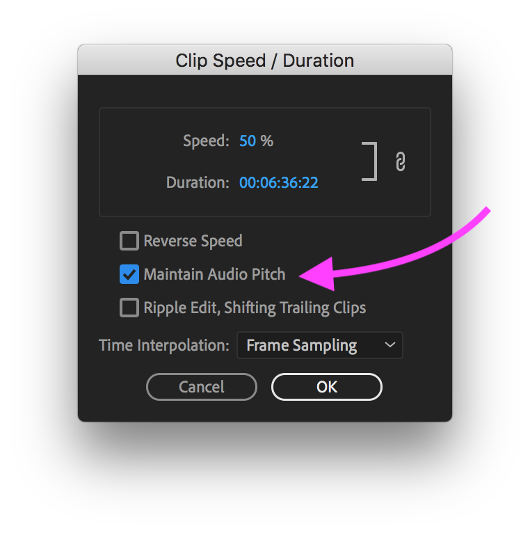 PR Speed Change dialog box with Maintain Audio Pitch enabled.