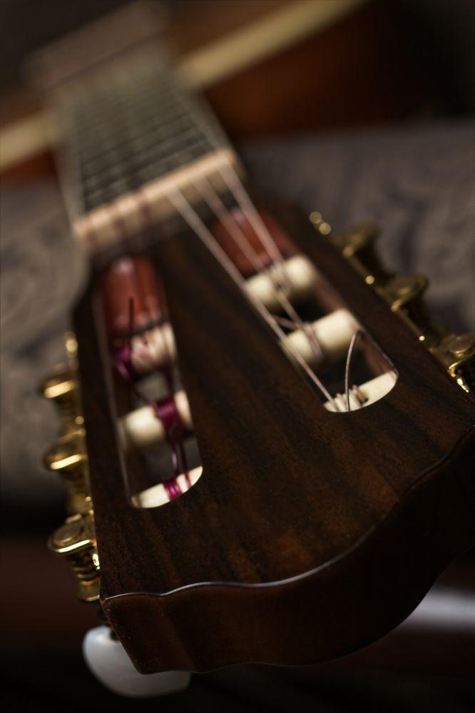 guitarra (3).jpg